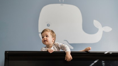 From Baby to Toddler: Transitions